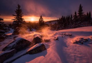 Winter fairy scene